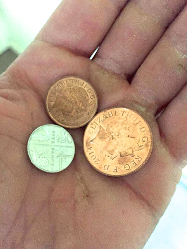 Johnny's Pennies